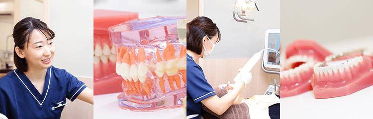 日本矯正歯科学会認定医による矯正治療